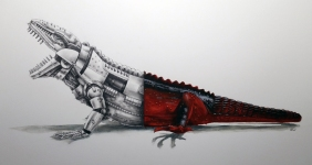 Imperial Marine Iguana graphite and watercolor 12x16