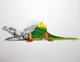 M.I.C. Dimetrodon watercolor and graphite 12x16