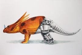 Imperial Styracosaurus watercolor and graphite 8x12